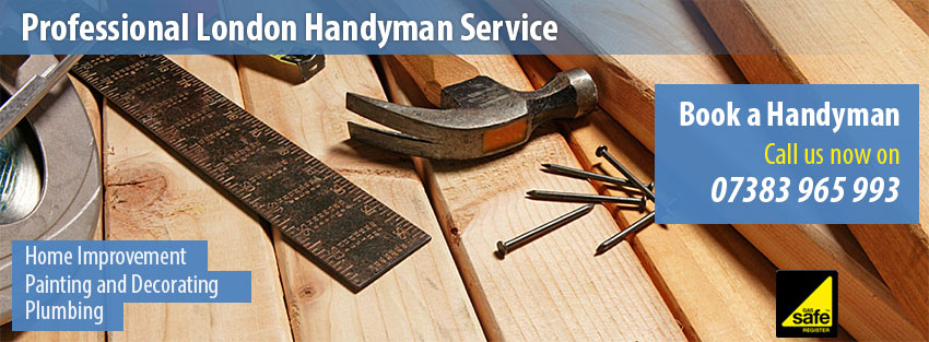 TPS Handyman London